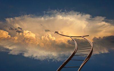 El optimismo como predictor del éxito